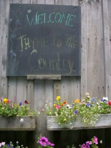 Welcome to Thyme in the Country