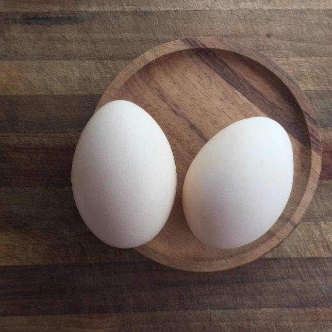 Bresse hatching eggs